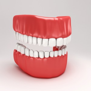 model of perfect teeth